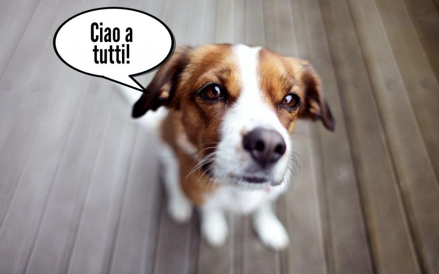 Ciao a tutti!  | phrase.it
