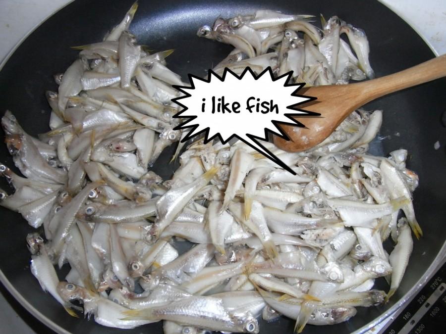 i like fish  | phrase.it