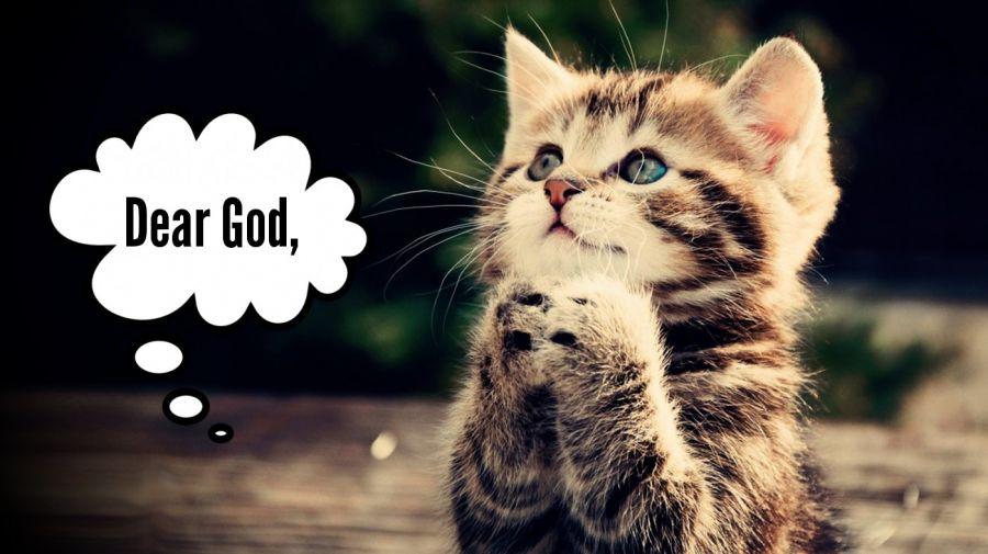 Dear God,  | phrase.it