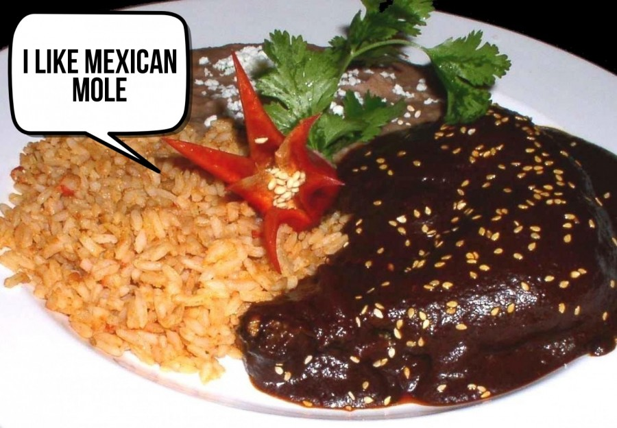 i like mexican mole    phrase.it
