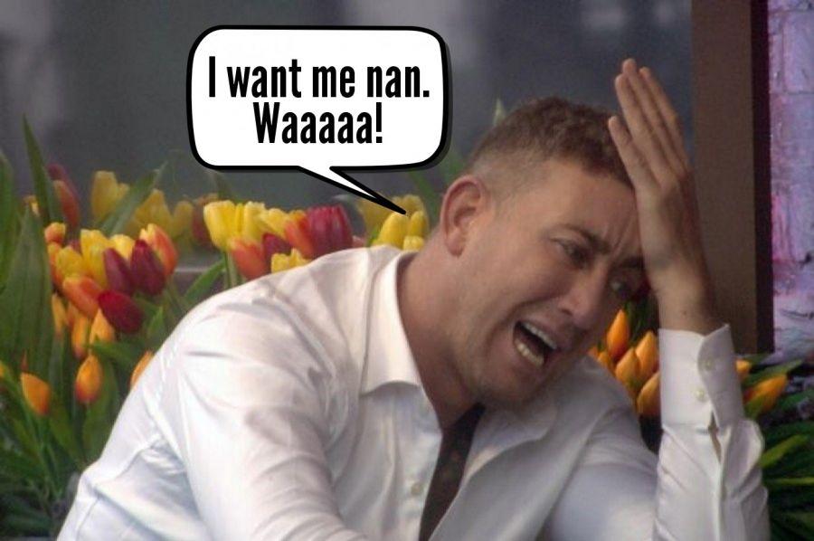 I want me nan. Waaaaa!  | phrase.it